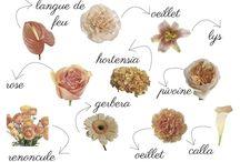 Mariage / Fleurs