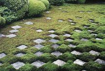 Gardens / garden design, ponds, landscape