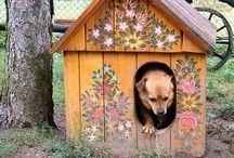 Honden Huisjes