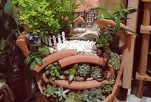 Succulent plants(多肉植物 寄せ植え) / 素敵な多肉の寄せ植え♪
