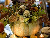 Thanksgiving & Fall / Fall and Thanksgiving decorating, activity, and recipe ideas. / by Nikki Wills