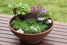 MLFG Fairy Garden Inspiration