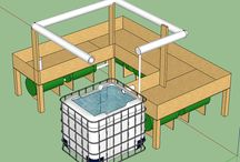 Aquaponics / Simple home aquaponics farm.