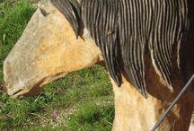 """MAISON NATURE / Retrouvez l'histoire de cette maison nature construite par Ami Bois sur notre blog """"Les Conseils d'Ami"""" http://lesconseilsdami.jimdo.com/2015/01/17/dans-le-lot-la-maison-nature/"""