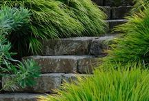 Inspiration Garden Paving and Paths