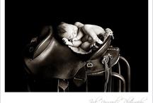 Jade Norwood Photography / www.jadenorwood.com Weddings, families, newborns