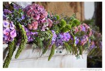 Radiant Orchid & Lavender Bridal Inspiration / wedding color inspiration / by Ju.Lee Collection