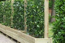 GARDEN FENCING / by The Sustainable Life