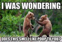 Funny HaHa! :)
