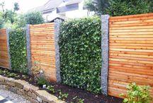 Mur och staket