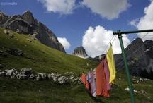 Nature / Val di Fassa, Trentino Süd Tirol, Dolomites, Italy, mountain