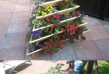 Innovative garden ideas