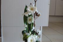 Fleur de coton pour un anniversaire