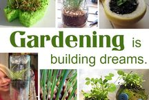 Gardening fun / by Jessica Boggs