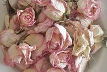 fiori e decori