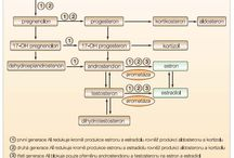 CYTOSTATICS hormone antagonists