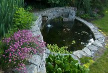 Ideas for redoing the Pond / by Amy Ruiz