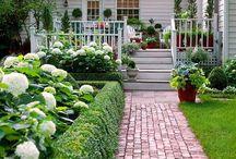 Garden / Tuinen, planten, bestrating