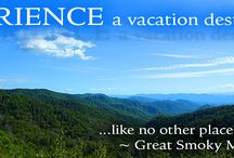Condos in the Great Smoky Mountains / Wouldn't it be great to have a place of your own in  the Great Smoky Mountains?