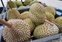 Mao Shan Wang Durian Party / [SPGG event: 16 Jul 15] Eat & Mingle Party with  mao shan wang durian