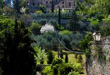 Toscana whit love