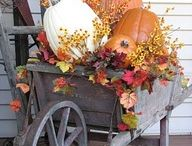 Fall, And Thanksgiving decorations / by Lynn Brown