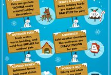 Infographics / Pet Safety Tips