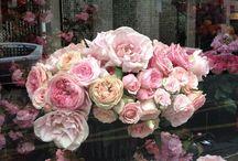 Mooie bloemen / Blij van bloemen