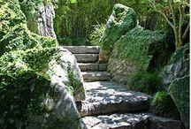 Garden Ideas / by Leigh Fortenberry