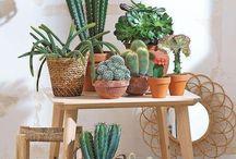 Decoración Primaveral / Inspírate con estas cálidas ideas y renueva tu hogar con un estilo fresco y primaveral.