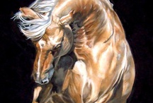 Equine Art / by Loretta Cannon Proctor