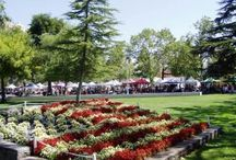 Farmers Market In Concord, CA / The focal point of downtown Concord is Todos Santos Plaza which encompasses an entire city block and is known for its farmers market, free summer concerts, and large number of surrounding restaurants.  This pedestrian-oriented plaza has easy access to BART and the world famous farmers market happens year round on Thursday afternoon.  From May to September the Music & Market Series combines the freshest produce in the world with amazing CA live bands. www.visitconcordca.com