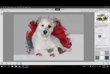 Photoshop Elements 15 Videos
