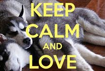 I love Husky / Pictures about Husky only