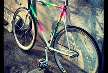 Fixie / bicicletas fixie