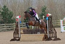 Retraining and Rehoming Ex-Racehorses / Do you have a love for thoroughbreds and ex-racehorses? This board will bring you all our top tips for taking on and training ex racehorses and why they are fantastic!