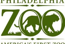 Friends of the Binghamton Zoo / by Binghamton Zoo