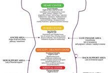 Centres d'énergie du corps