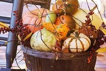 Fall Decor / by Melissa @ Back Roads Revival