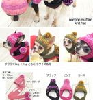 puppy knitting