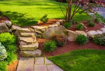 Landscaping and Outdoor Improvement