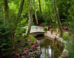 Nanina's Exteriors / Discover our beautiful grounds perfect for outdoor ceremonies and photos!