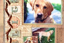 Pet scrapbook page ideas