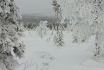 Talven lumo
