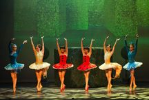Dancewear, costumes, and accessories