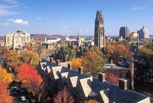 Play Tourist / Some of our favorite places in Greater New Haven / by University of New Haven Graduate School