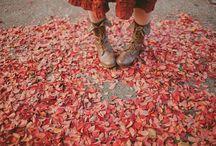 Aesthetic: Autumn