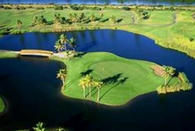 Caribbean Golf Courses / Hey golfers! If you like golfing during your travels to the Caribbean, you'll love our Caribbean Golf Courses board. Whether it's Puerto Rico, Bahamas, Aruba, Mexico or any island, here are some of our favorites!