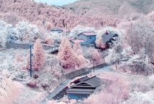 Korean winter