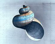 """Selections from Rafael Araujo's """"Calculations"""" series. / Select pieces from Rafael Araujo's """"Calculations"""" series, which includes the Nautilus image that accompanies much of Logical MarketIng's collateral. Amazing work."""